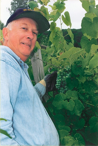 Photograph of a man standing by grape vines.