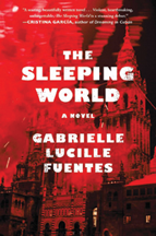 Image of book cover for 'The Sleeping World': a blurry red and black image.