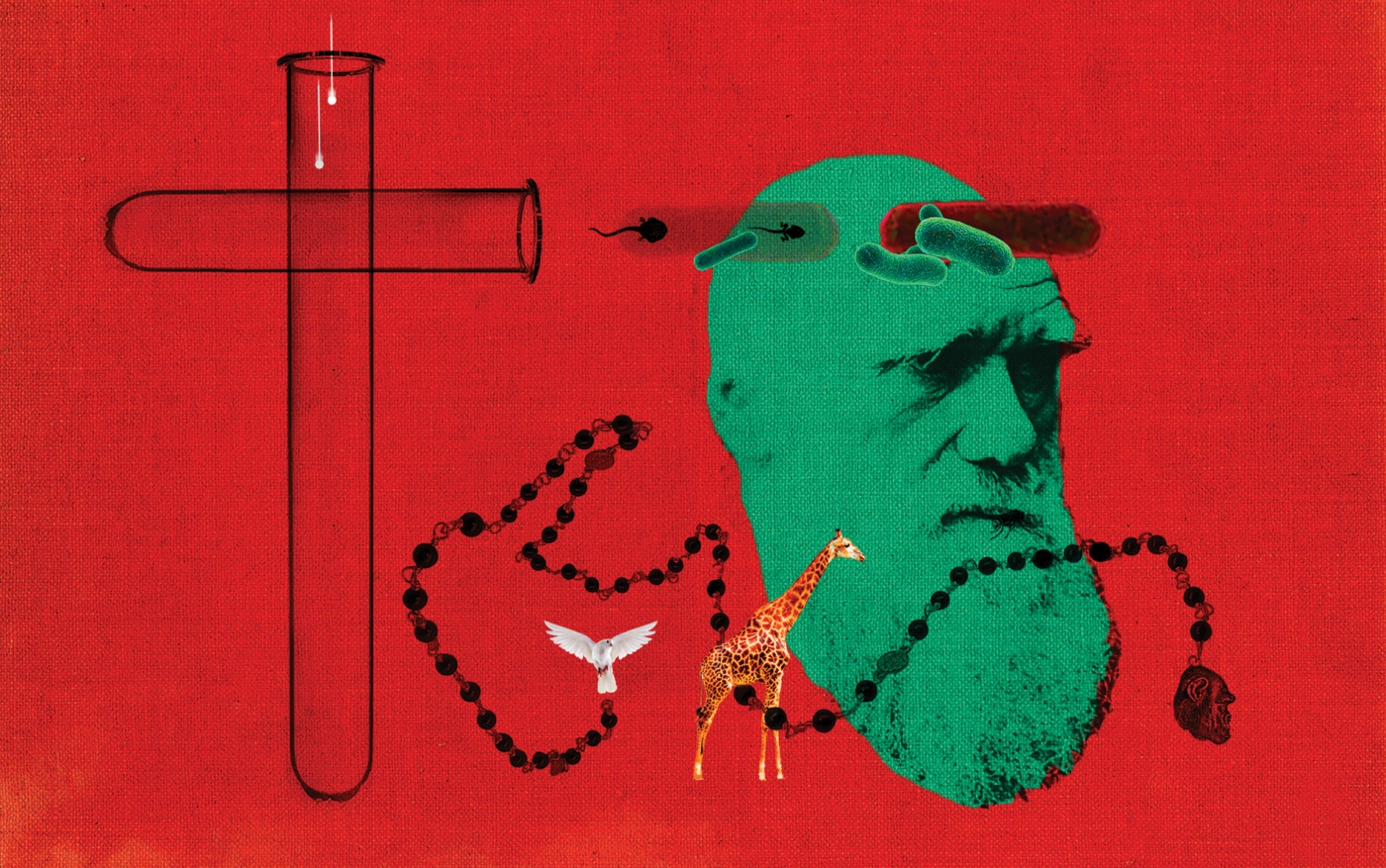 Illustration of Charles Darwin, test tubes, and a Catholic rosary.