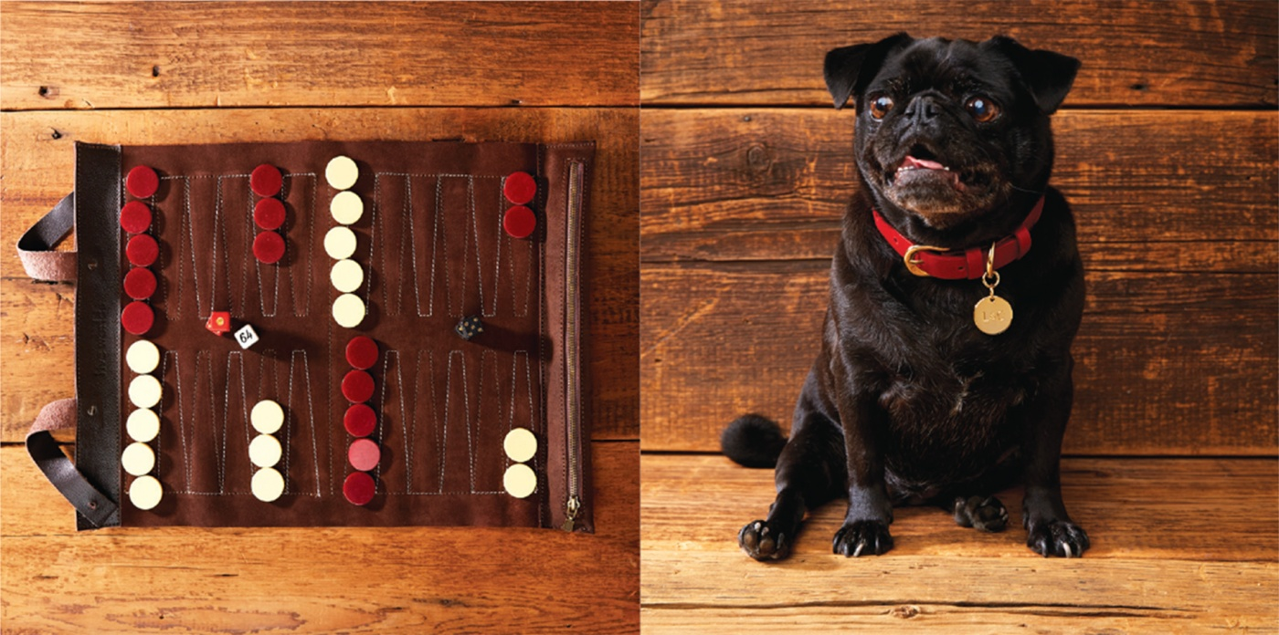 Backgammon set and dog collar