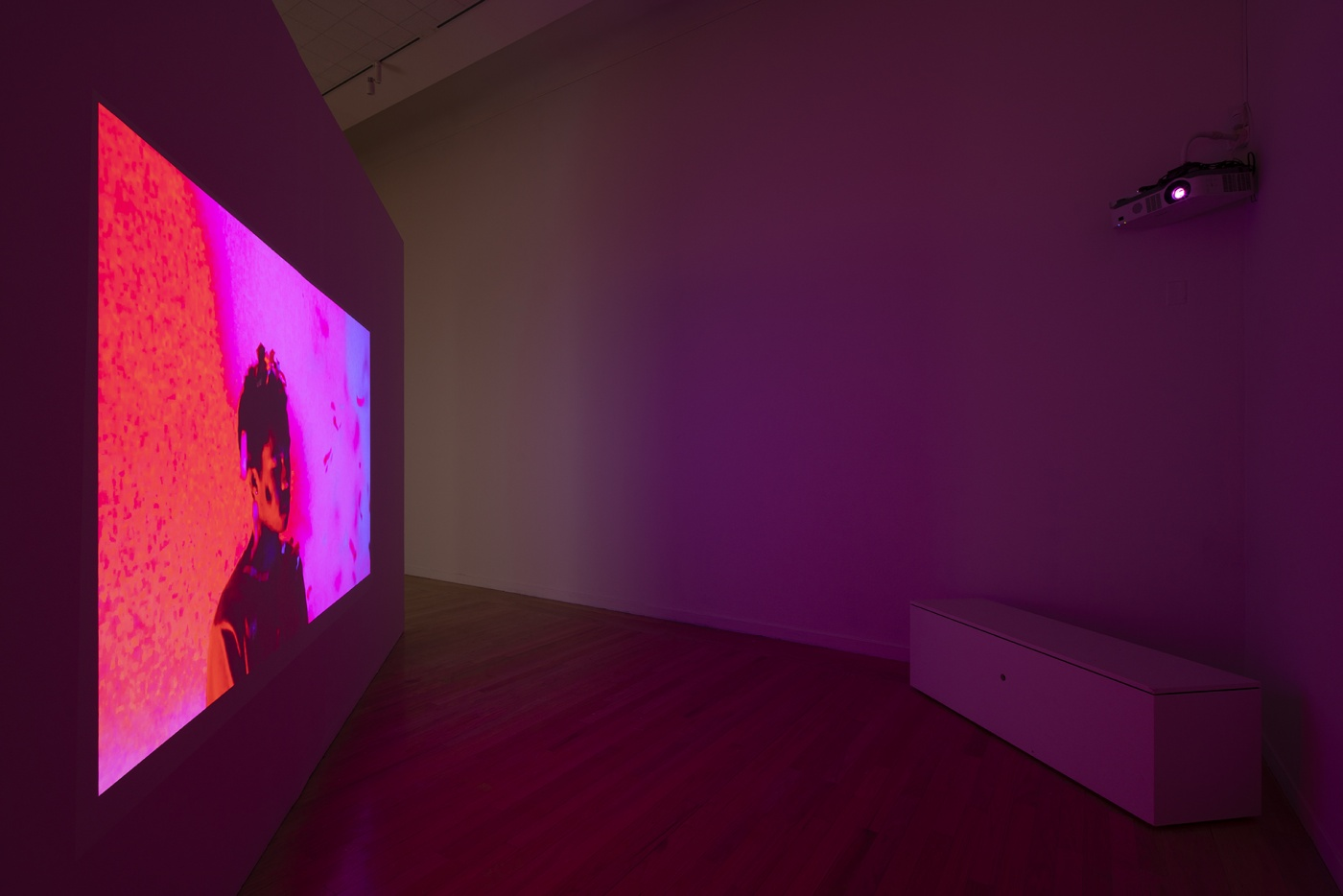 """slide 6_""""Jibade-Khalil Huffman: Now That I Can Dance,"""" 2020. Tufts University Art Galleries, installation view."""