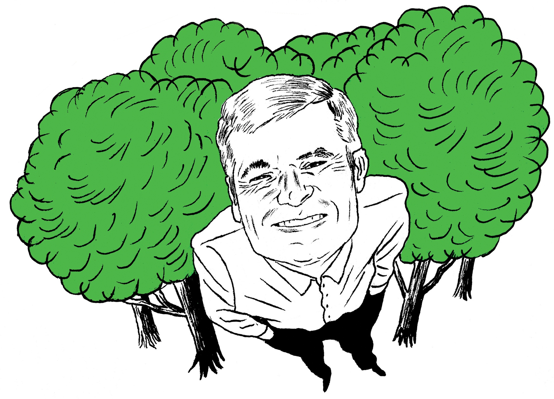 Illustration of John Daley of American Forests by Meg Moore