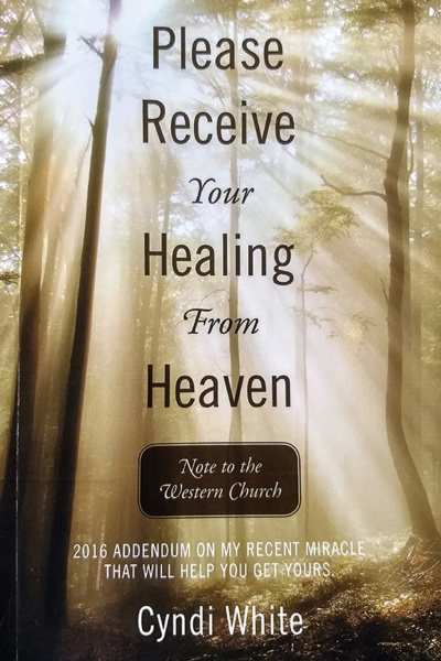 Please Receive Your Healing From Heaven book cover