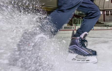 Noah's skates