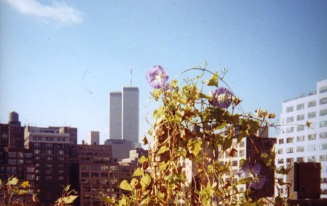 Image of the World Trade Center towers